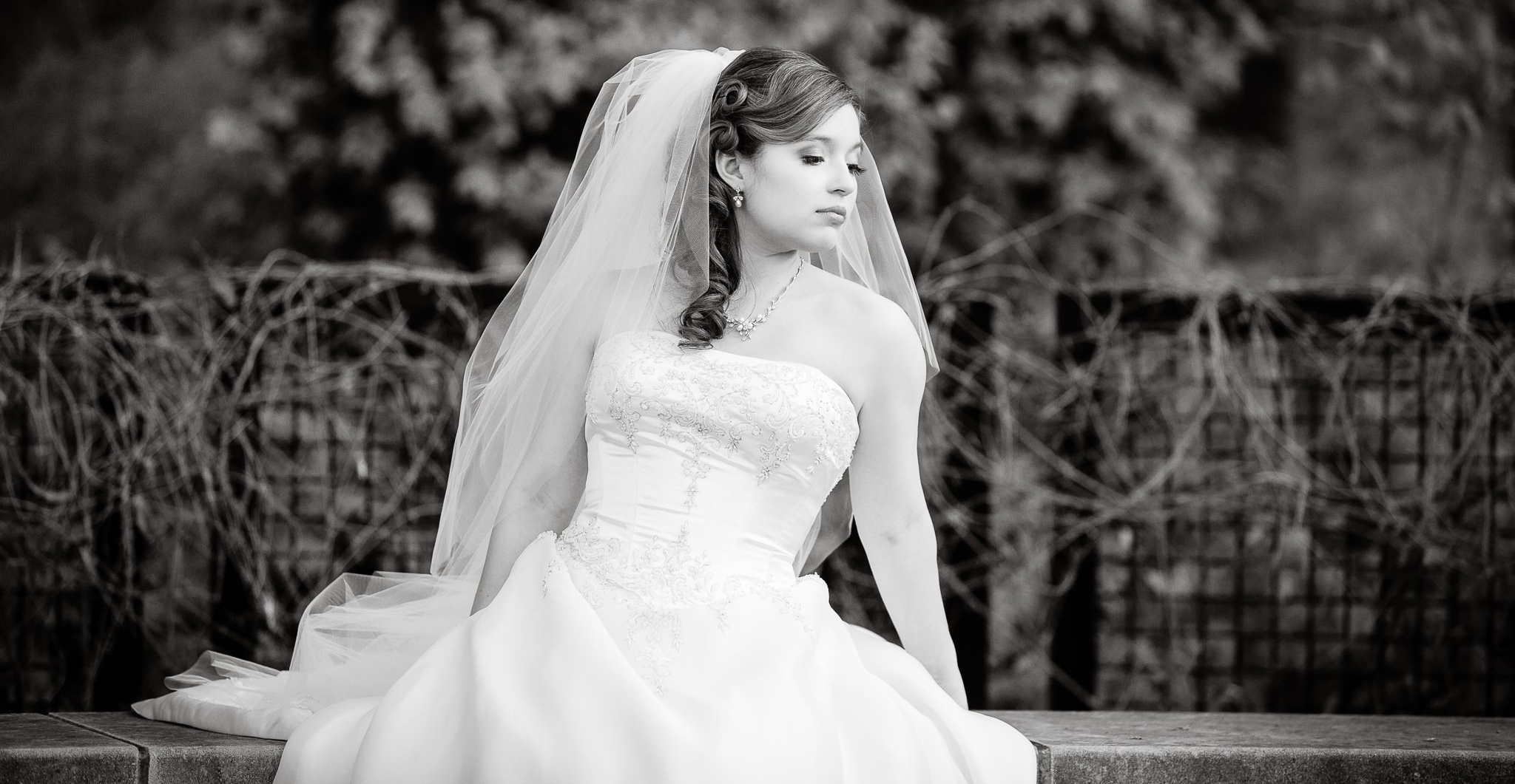 Image of a bride. Photograph by Wes Brown Photograpy
